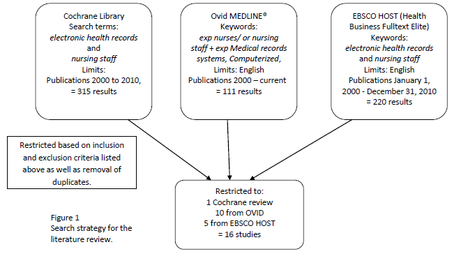Search strategy for literature review nursing