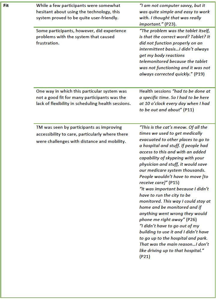 Table 4b. Key Qualitative Themes: Fit