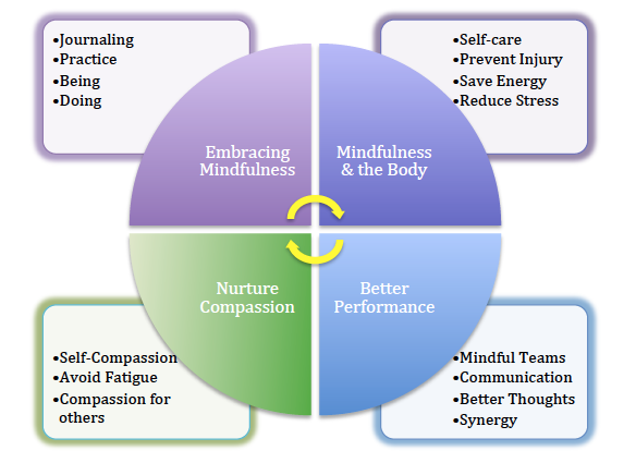 Figure 1: A summary of The Mindful Nurse Main Sections